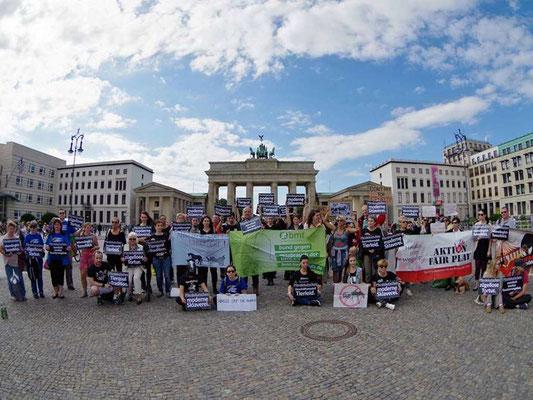 Demo für ein Pferdekutschenverbot in Berlin