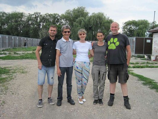10 Tage im Tierheim Brasov in Rumänien - Juni 2018