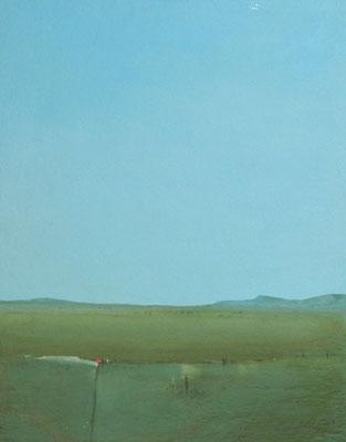 Felder, Acryl auf Leinwand auf Faserplatte, 50x40cm