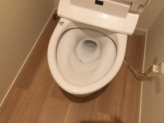 トイレクリーニング 洗浄前