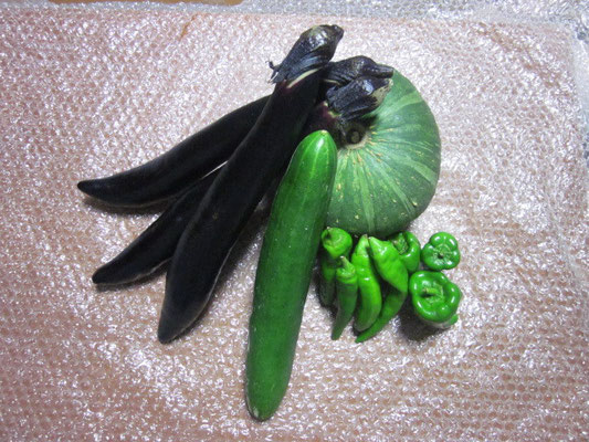 鹿児島の野菜