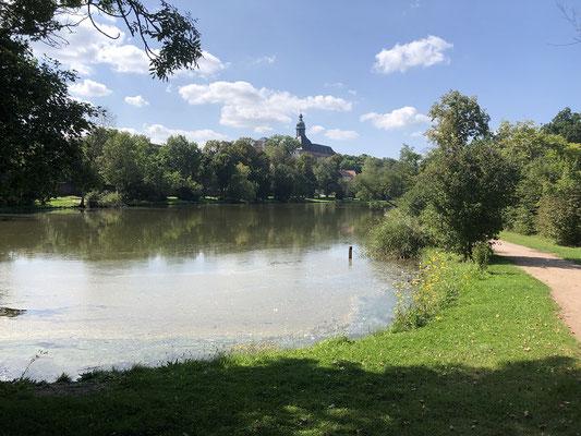 Im Tal fließt die Wipper am Fuße des Schlosses durch einen weitläufigen Park.