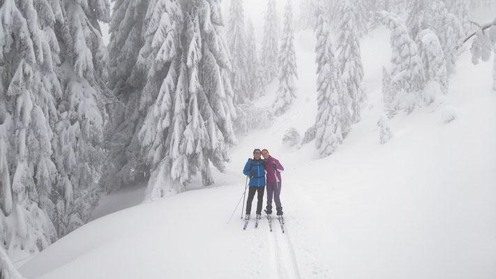 allein im nebligen, kalten Winterwald