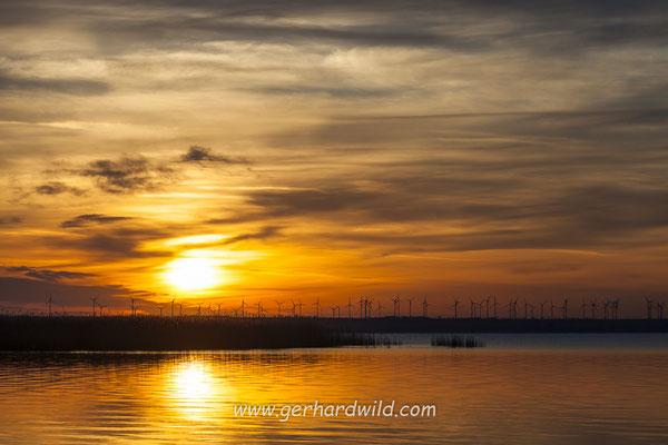 Sonnenaufgang am Neusiedler See