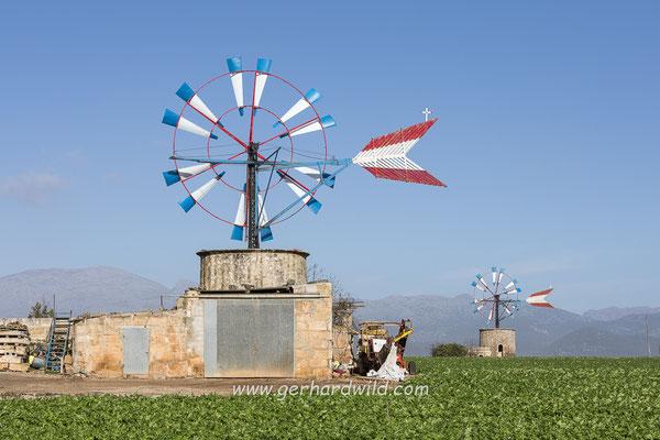 Windräder zur Felderbewässerung