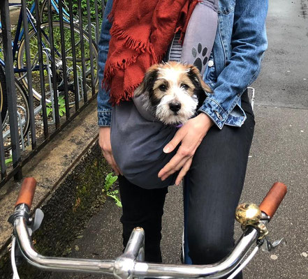 auch Velofahren geht mit Kromi bestens!