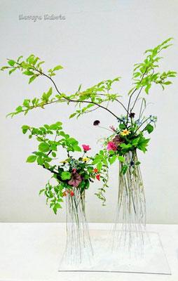 根上りの仕立てのように、植物の根源の根を繊細に優しく表現した。