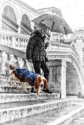 ©Maurizio Rossi