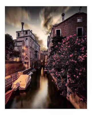 ©aurora_e_il_mondo_dei_libri