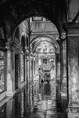 ©Stefano Marcolla