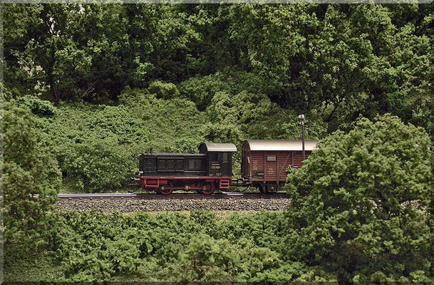 """V 20 mit kurzem Güterzug - auf dem Weg zum Endbahnhof. Bäume und Büsche bestehen aus eingefärbtem """"Seemoos"""" der Firma Noch (nicht zu verwechseln mit dem altbekannten Islandmoos), mit Woodland """"Coarse Turf"""" und Heki-Laub beflockt."""