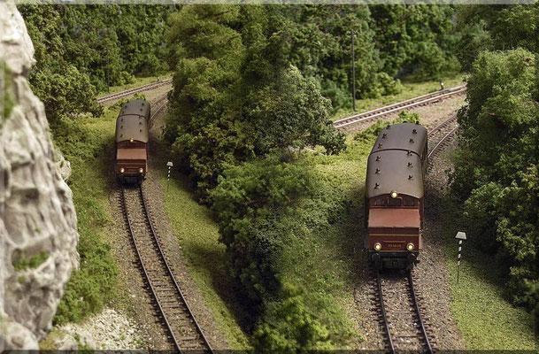 """Gleich nach dem Gebüsch kommt die Einfahrtweiche des Endbahnhofs. Der Akku-Triebwagen ETA 180 015, auch """"Wittfeld-Akkumulatortriebwagen"""" o. """"Wittfeld-Speichertriebwagen"""" genannt ist ein schönes Modell vom österreichischen Modellbahn-Hersteller Roco."""