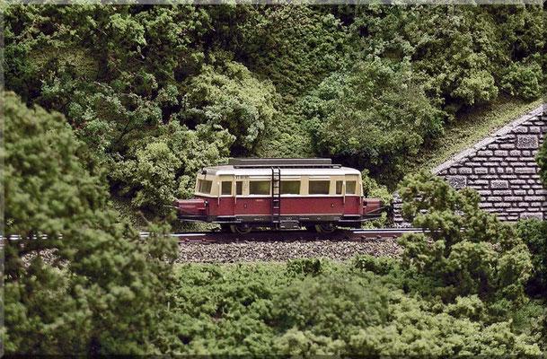 """""""Ausflug ins Grüne"""" mit dem Wismar-Bus - auch """"Schweineschnäuzchen"""" genannt! (VT 89901 - ex VT 133). Diesem hübschen Modell (Arnold) wurde durch Einbau einer """"zweigängigen"""" Motorschnecke das Rasen abgewöhnt und die Endgeschwindigkeit quasi halbiert."""