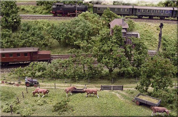 Neben der Paradestrecke verläuft ein Feld/Landwirtschaftsweg, an dem auch eine  kleine Kuhweide liegt.                 Landwirtschaftliche Fahrzeuge: Marks | Tiere: Preiser
