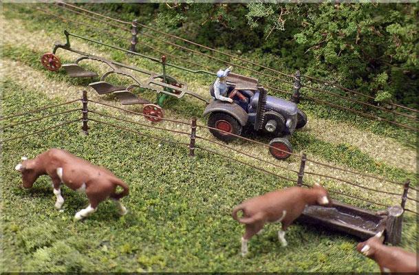 Kuhweide und Traktor mit Pflug aus der Nähe. Man beachte den Mähbalken  des Fendt. Der Weidezaun besteht aus Stecknadeln und Spulendraht.