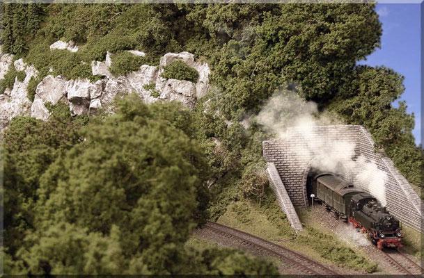 Das Süd/West-Portal des Burgbergs. Kurz nach Tunnel-Ausfahrt fährt die BR 64 in den Bahnhof Waldbronn ein. Rangier-Haltetafel: Paul Petau. Der Tunnel wurde durch massives Felsmaterial getrieben. Links zweigt der Industrie-Anschluss zum Steinbruch ab.