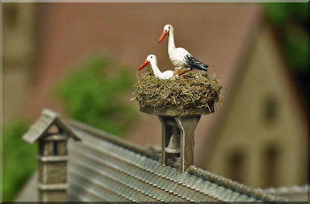 """Storchen-Nest. Das """"Storchen-Pärchen"""", das sich auf  auf dem Dach beziehungsweise auf der Glocke des """"Waldbronner"""" Rathauses ein Nest gebaut hat - ganz aus der Nähe. Am Nachwuchs wird auch schon fleißig gearbeitet, wie man unschwer erkennen kann. ;-)"""