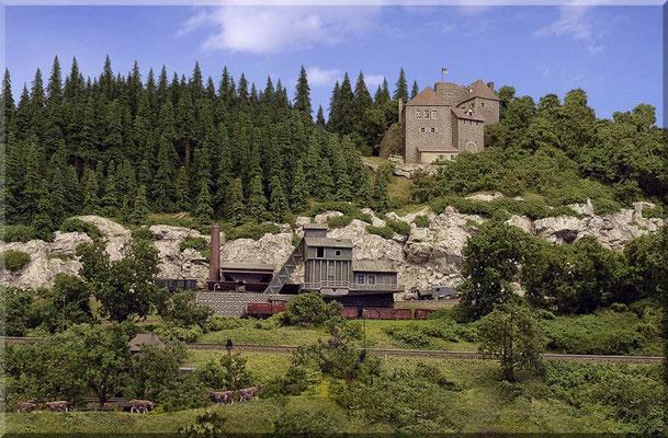 """Der mittlere Teil des """"Großen Burgbergs"""" ist das Verbindungsglied von linkem und rechtem Anlagenschenkel u. hat eine Tiefe von 1,35m. Den Eindruck """"Echten Waldes"""" erzielt man durch enges Pflanzen, vorbildnahe Farbtöne u. maßstäblich große Nadelbäume."""