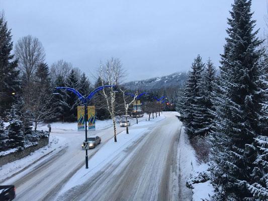 Während ihre deutschen Freunde von weißen Weihnachten träumen, genießt Janina den Schnee in Kanada