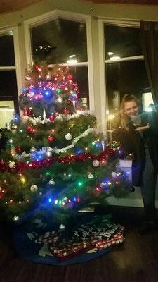 Der selbst gefällte Weihnachtsbaum in voller Glitzerpracht