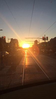 Blick aus der Straßenbahn auf einen traumhaften Sonnenuntergang mitten in Toronto.