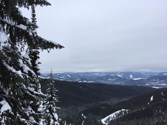 Ein weiter Blick über die verschneite Landschaft des North Okanagan Regional District