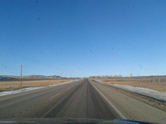 Prärie soweit das Auge blickt - Julia genießt die Weite Albertas