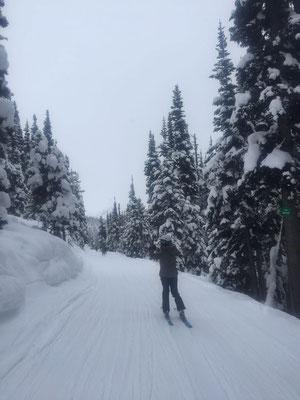 Skifahren in Whistler bedeutet atemberaubende Natur und viel, viel Schnee