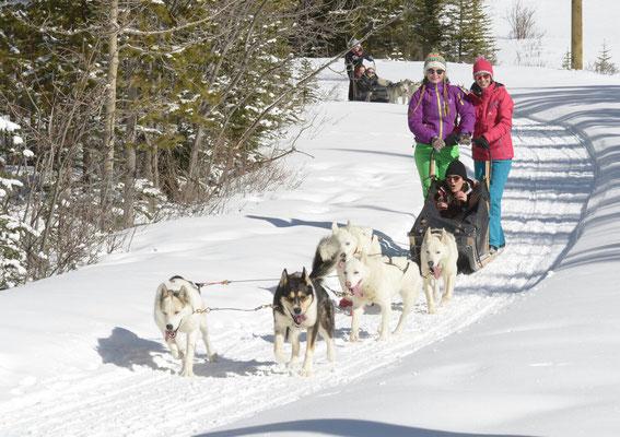 Ein Traum wird wahr - gemeinsam mit ihren Freundinnen fährt Teresa mit dem Hundeschlitten