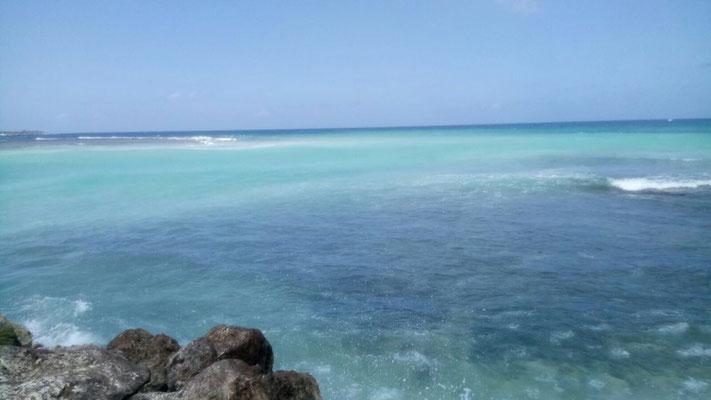 Glasklares Meer und warme Temperaturen. Merit genoss die Woche Urlaub.