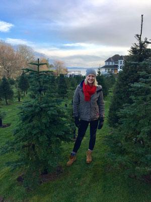 Christmas is Coming... Janina sucht in Nanaimo einen geeigneten Weihnachtsbaum