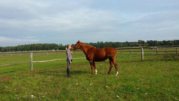 Auge in Auge mit den Pferden - Reiten ist Celias große Leidenschaft