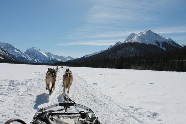Kanadas Natur verzaubert die Gastschüler immer wieder aufs Neue