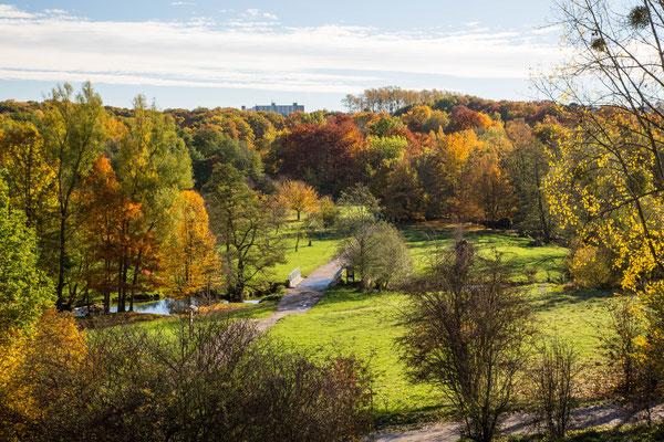 Landschaft  Indetal
