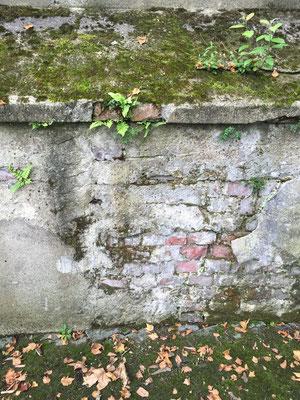 eine durch Risse, Moose, Mauersalze zerstörte Gartenmauer