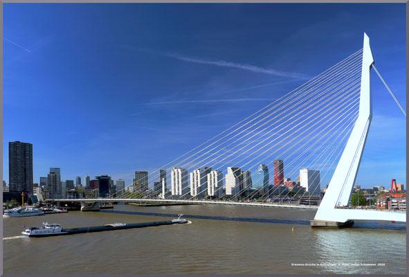 Erasmusbrücke in Rotterdam