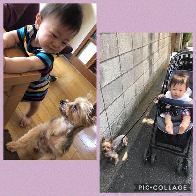 Zu Besuch in Tokyo bei Oma Rie, Yurika's Mama