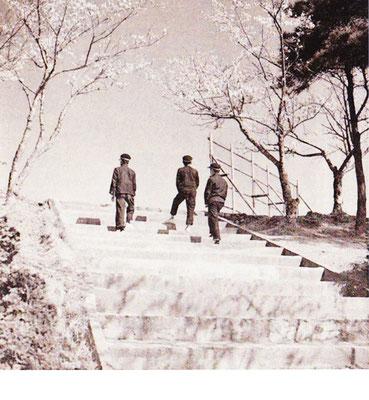 高い場所に建てられていた中学校への登校には、石段が使われていました。春には美しい桜・冬は降りしきる雪の下を通って通っていました。安心院盆地が見渡せる高台にあった中学校も、昭和40年には、現在の位置に鉄筋三階建ての校舎としてスタートを切りました。