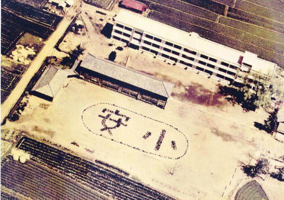 安心院小学校の全景です。航空写真で撮っています。中央の木造校舎がまだ講堂や職員室として残っています。講堂では、学芸会等が盛大に行われていました。運動場もずいぶん広くなっています。左側中央の建物は安心院幼稚園です。
