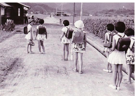 安心院小学校への通学の様子。安心院盆地の中央を南北に縦断する通学路です。写真の右側が小学校。左上の家が子供達がよく利用していた文房具屋「とみや」さん