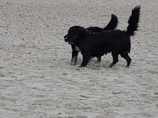 und am Strand bevor .....