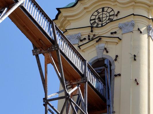 Brücke durch die Türme der Ursulinenkirche