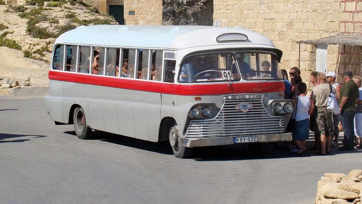 Busse auf Gozo