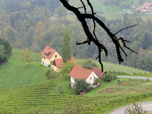 entlang der südsteirischen Weinstraße