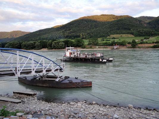 Fähre von Spitz nach Rossatz am rechten Donauufer
