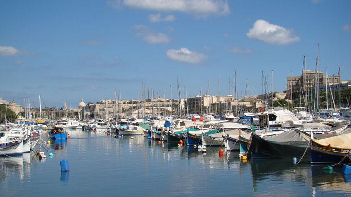 am Hafen in Msida
