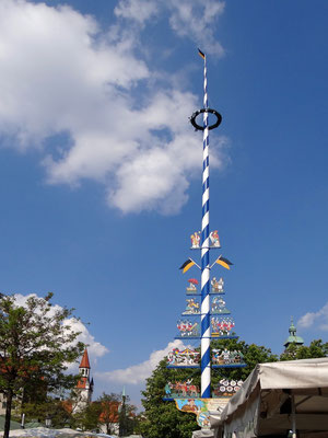 Maibaum auf dem Viktualienmarkt