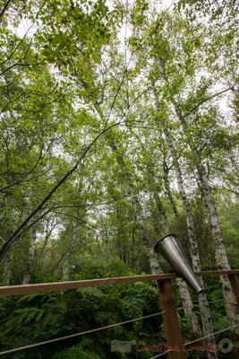 Amplificateur d'écoute des chants d'oiseaux et autres sons. Hourtin, Lagune de Contaut, Espace Naturel Sensible de Gironde