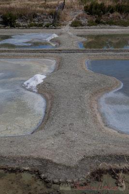Digues et écluses séparent les œillets des marais salants de l'Île de Noirmoutier entre l'Epine et Noimoutier en l'Île, Vendée, Pays de la Loire
