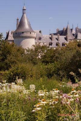 Domaine de Chaumont-sur-Loire, Loir-et-Cher, Région Centre-Val-de-Loire. Lundi 13 juillet 2020. Photographie © Christian Coulais